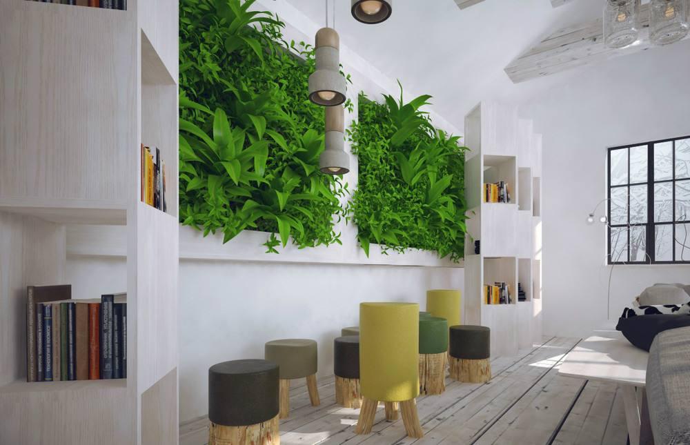 书房植物租赁